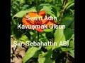 Kazım KARAHAN #ŞİİR  Senin Adın Kavuşmak Olsun  şiir : Sebahattin ABİ Download MP3