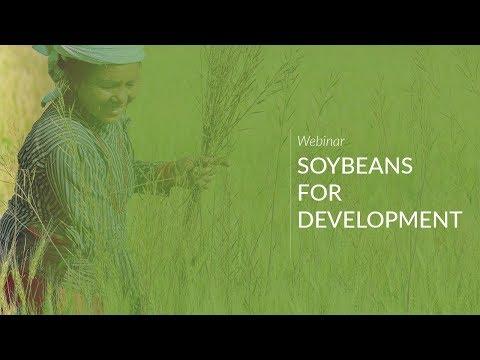 Webinar: Soybeans for Development
