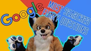 MOST ASKED FURRY QUESTIONS - Google Autocomplete