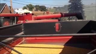Corn Harvest 2014