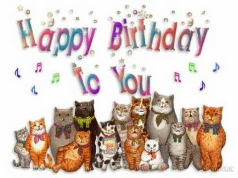 Cute Kittens Sing Happy Birthday To You