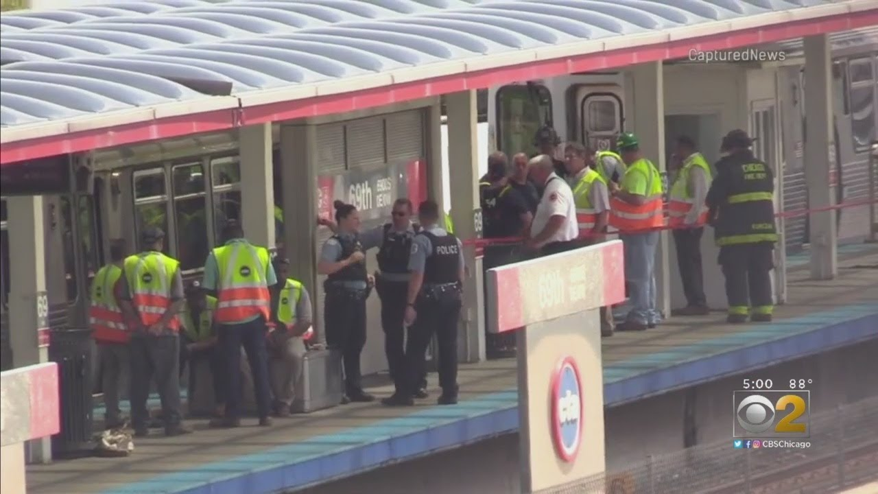 Red Line Temporarily Halted After Woman Hit By Train