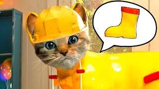 - ПРИКЛЮЧЕНИЕ МАЛЕНЬКОГО КОТЕНКА мультфильм для детей про котенка Детская игра от КИДА пурумчата