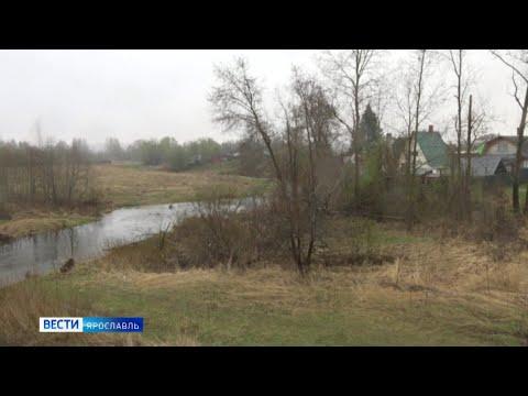 Видео В Ярославском районе взяли пробы воды из реки Шиголость
