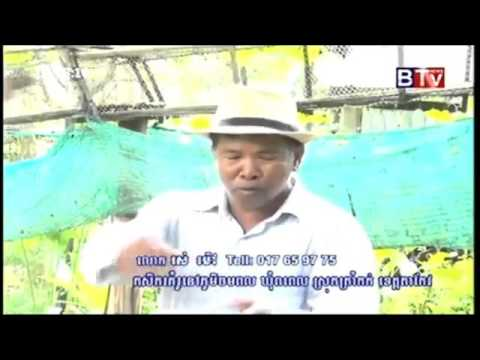 BTV,   Agriculture News