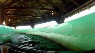 Snake River Falls POV