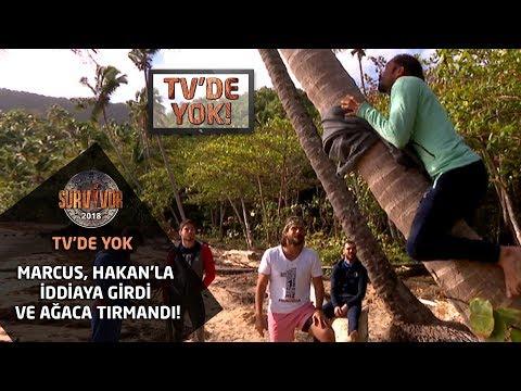 Survivor 2018 | TV'de Yok |  Marcus, Hakan'la iddiaya girdi ve ağaca tırmandı!