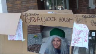 Baja's Chicken House 2