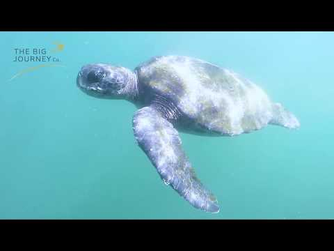 Our Galapagos Islands Tour
