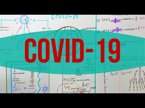 COVID-19 // Коронавирусная инфекция: Эпидемиология и Патогенез