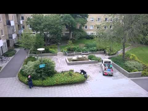 Stockholm City Workers Clean a Small Garden 2015