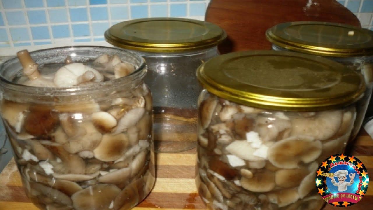 маринованные грибы опята на зиму