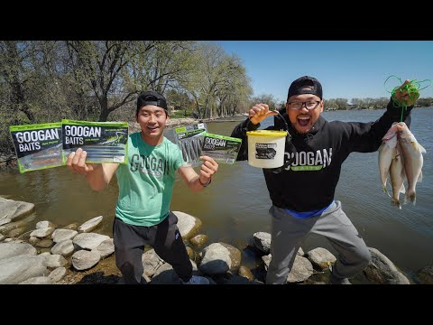 LIVE BAIT Vs ARTIFICIAL LURE Walleye Fishing Challenge!