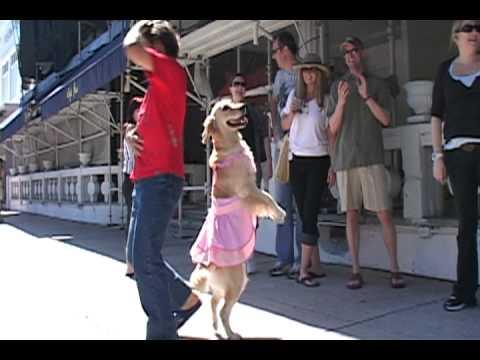 Carrie baila merengue en Miami