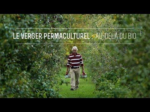 Le Verger Permaculturel : Au-delà du bio (vidéo campagne Kickstarter)