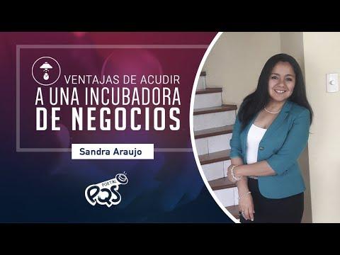 Ventajas De Acudir A Una Incubadora De Negocios - Sandra Araujo