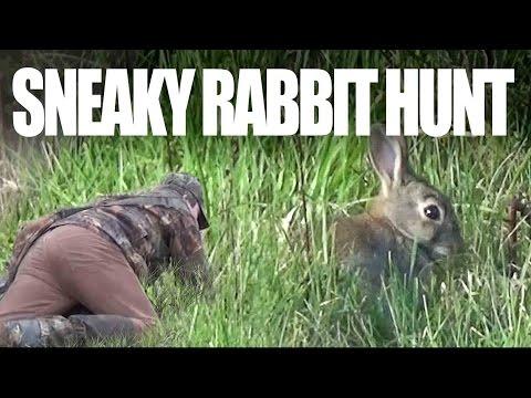 Sneaky rabbit hunt