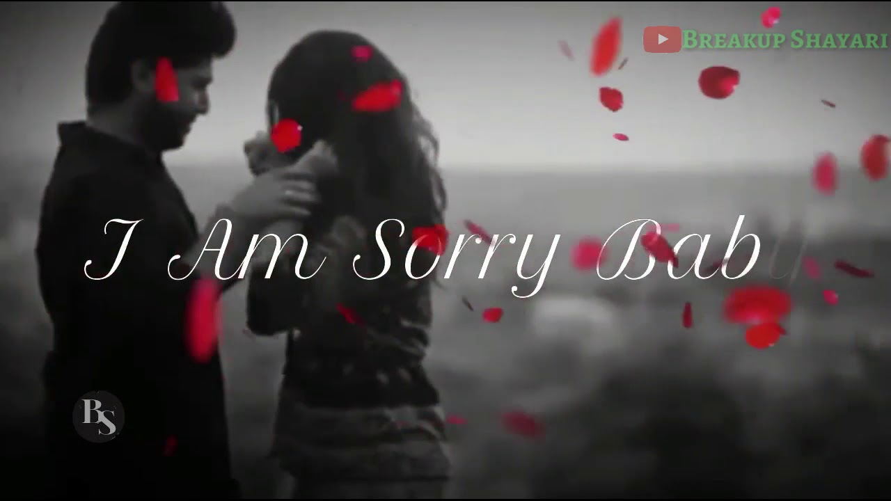 Im Sorry For Hurting You Song Whatsapp Status Youtube