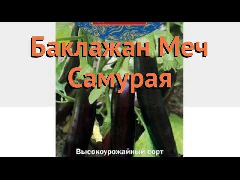 Баклажан обыкновенный Меч Самурая (mech samuraya) �� обзор: как сажать, семена баклажана Меч Самурая