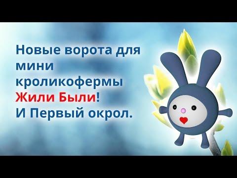 Видео Кладочная сетка в н новгороде от производитедя