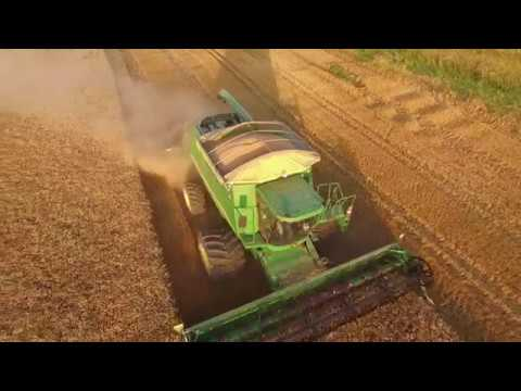 Kansas Wheat Harvest 2017 | Murphy Farms