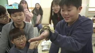 찾아라! 상상 크리에이터- 파충류 소년, 윤주환