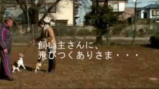 つづき http://seo-air.jp/wU4F5m http://x.vu/240104 詳しくはこちらの...