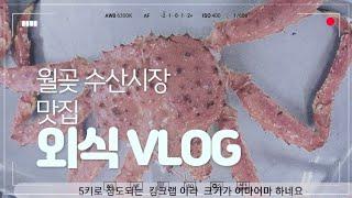 외식 VLOG 맛집 월곶 수산시장