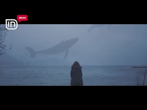 """Rreziku i """"Balena Blu"""". Loja nënshtron të riun dhe e çon drejt vetëvrasjes"""