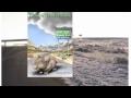 Follow That Mouse - YA Fantasy Book Trailer