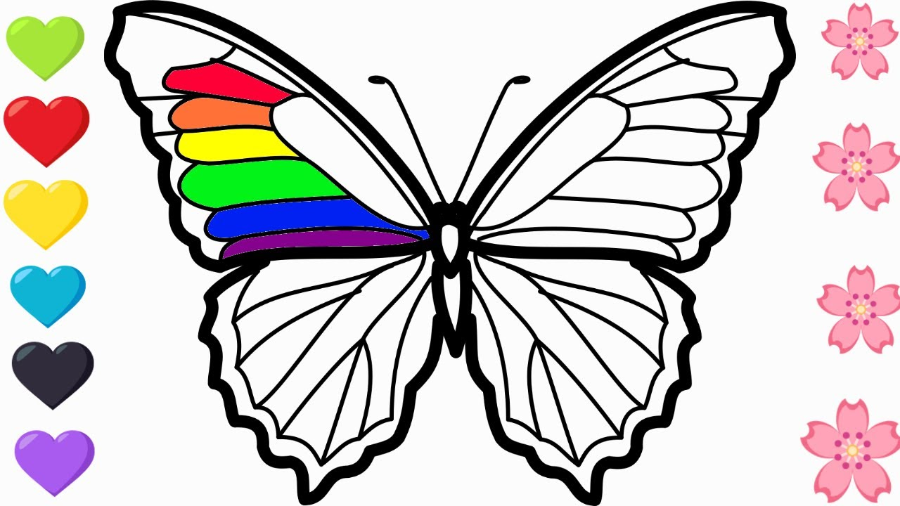 RAINBOW COLOR BUTTERFLY| learn how to draw| COLORING PAGES ...