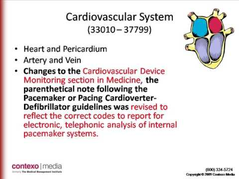 medical coding certification boot camp -- contexomedia, Human Body
