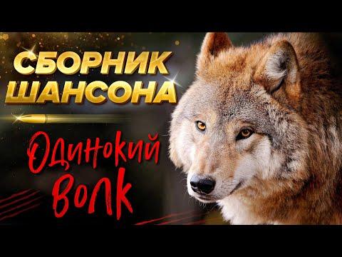 Одинокий волк! Лучшее в шансоне!