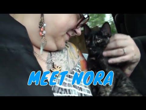 MEET NORA