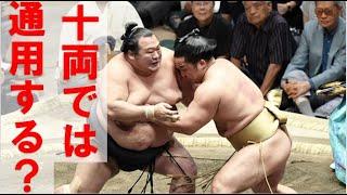 豊ノ島が十両復帰をほぼ確実にし、琴奨菊が幕内の中位で奮闘する中、力...