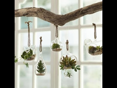 20 Gorgeous And Simple Indoor Hanging Plants Ideas For Your Sweet Home Women Fashion Lifestyle Blog Shinecoco Com