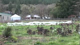 Rainwater  Catchment  at Brookside Farm in Willits, California