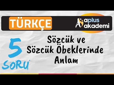 Türkçe  / Sözcükte ve Söz Öbeklerinde Anlam 5 soru / Aplus Akademi - Hedefe Aplus Hazırlık