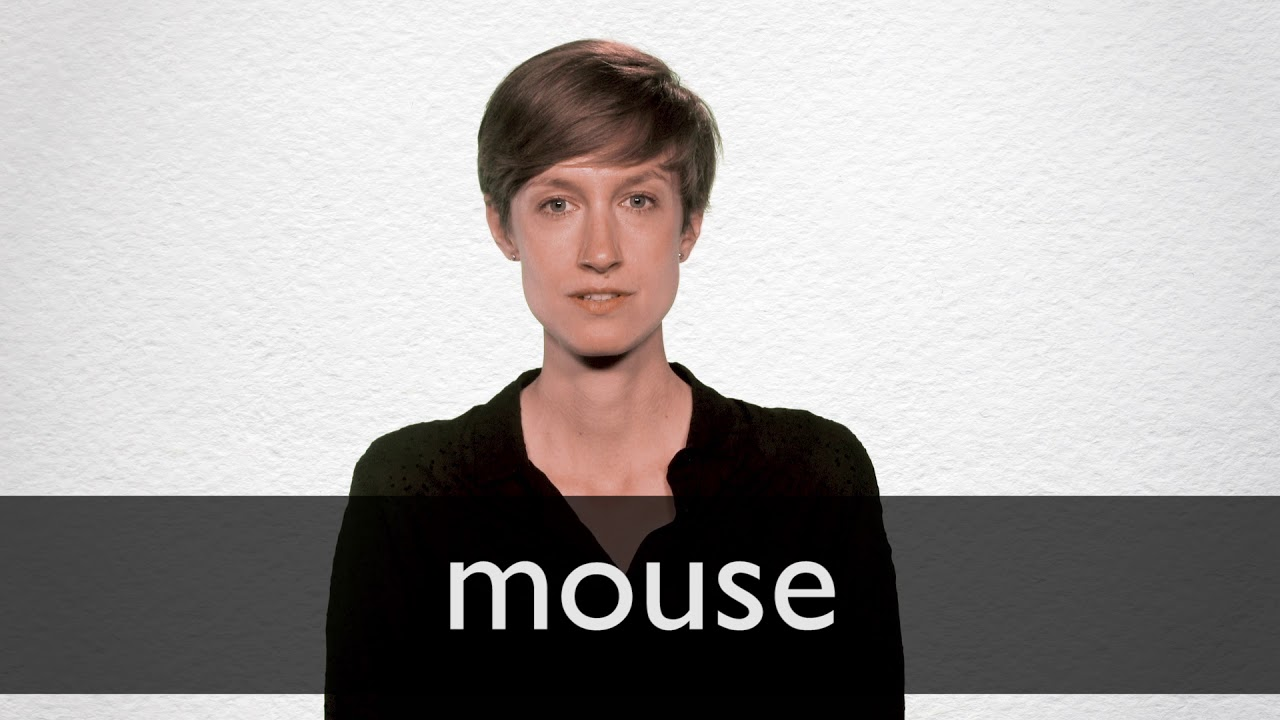 Mouse definition and meaning | Collins English Dictionary