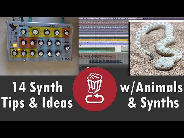 14 Synth Tips and Ideas with Animals and Synthesizers (from Instagram...)