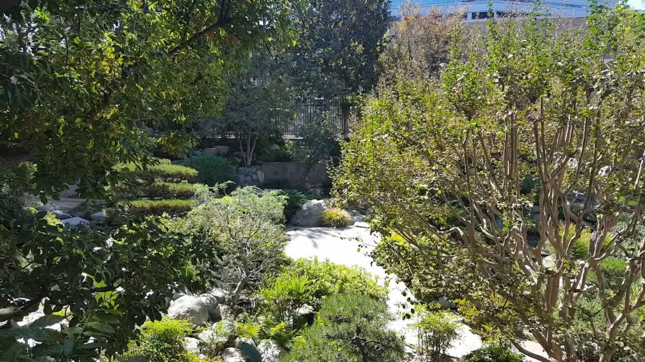 A Japanese garden in Downtown LA - YouTube