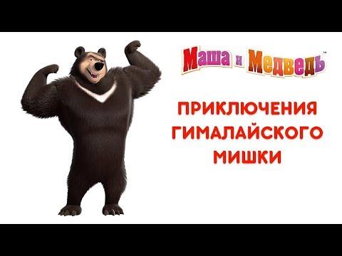 Видео Маша и медведь игры онлайн бесплатно