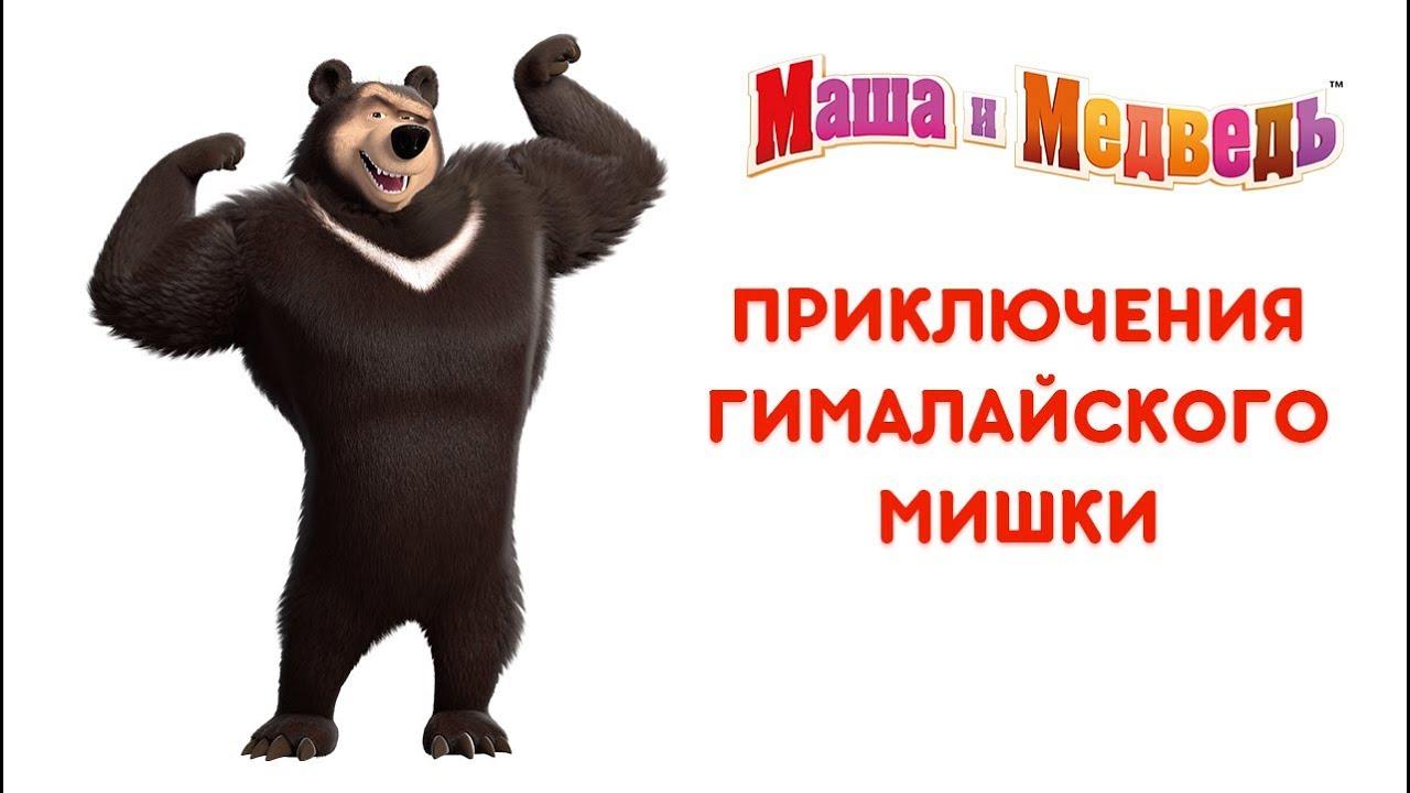 Приключения Гималайского Мишки - Маша и Медведь