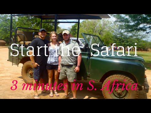 Traveling South Africa - Cheetahs, Lions, Safari, Penguins and Travel