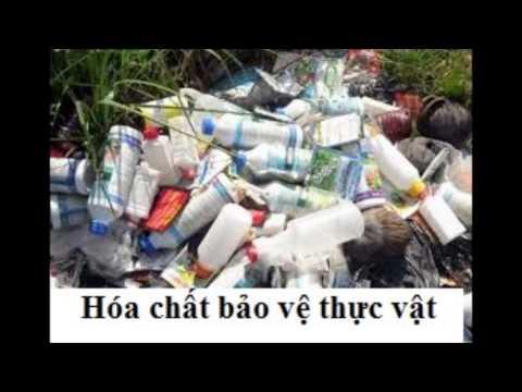 Phim nguyen nhan phat sinh dot bien gen sua lan 2