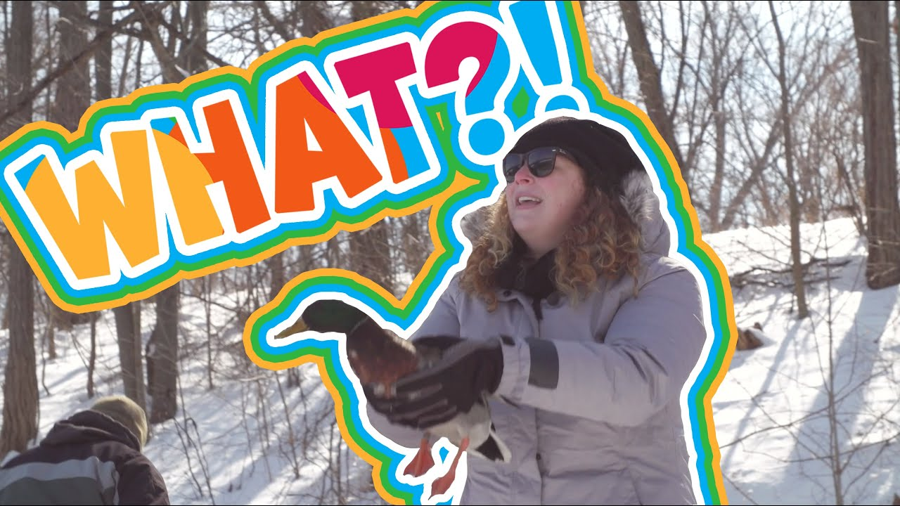 I Can Be What?! | Wildlife Technician
