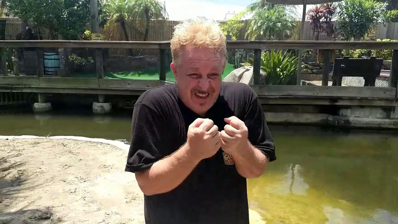 kierg37 || discover zoo chat crocodile trainer man