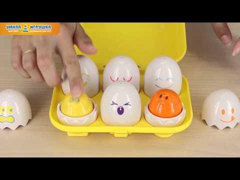 Игра «Найди яйцо» TOMY