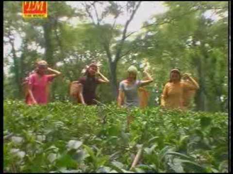 03.  Bhedaan Teriyaan Hooo...... - Sanjeev Dixit (TM Music)