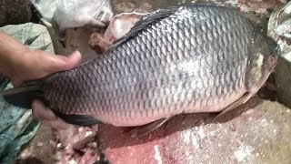 Amazing Rui Fish Cutting Skills Competition Live in Fish Market-Fillet Fish Slicing